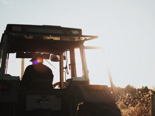 Détermination des pratiques agricoles favorisant la minéralisation de la matière organique du sol au Saguenay–Lac-Saint-Jean