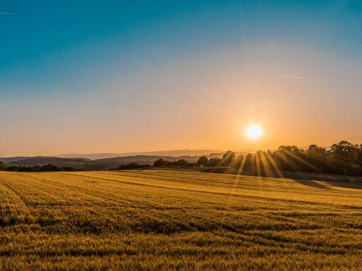 Système d'innovation en agriculture nordique