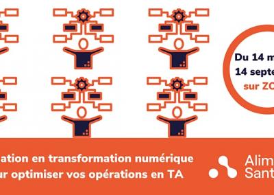 Formation en transformation numérique